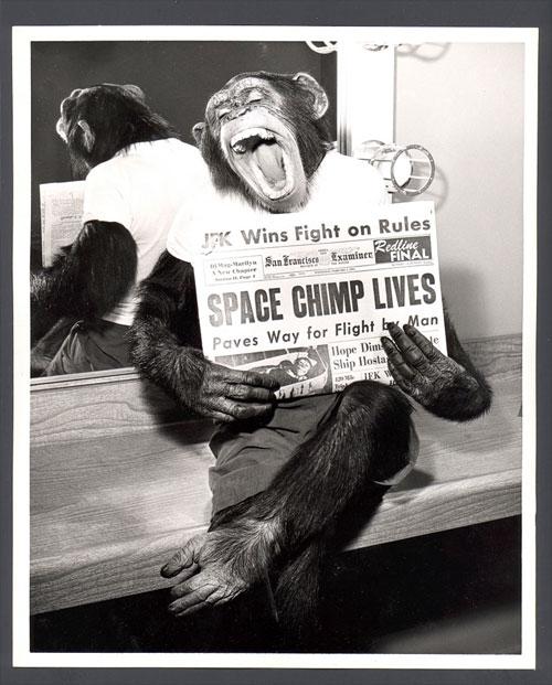 Photo du mois (Mai 2012) Astrochimp