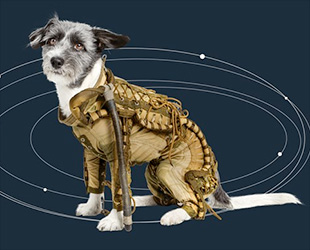 dog in space suit - photo #15