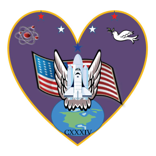 nasa astronaut wings logo - photo #3